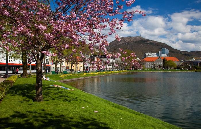 Weather in Bergen