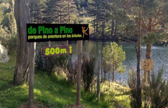 De Pino Pino Parque in Madrid