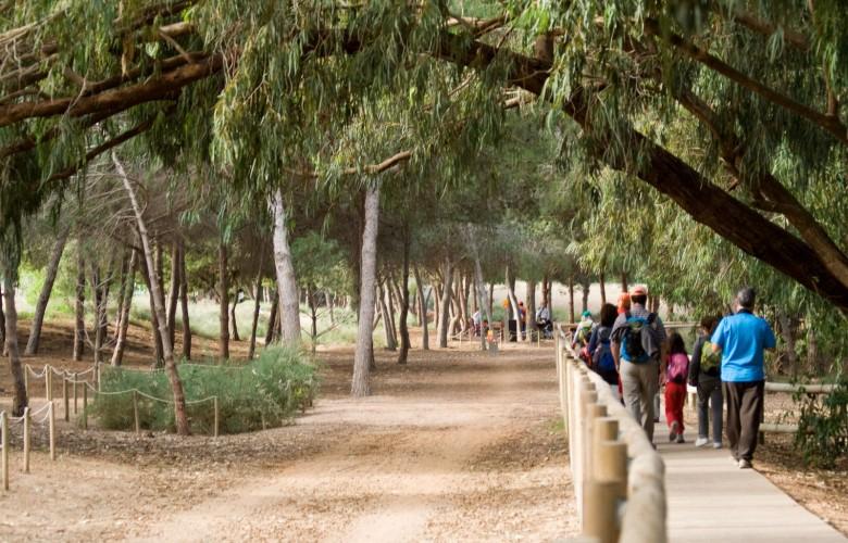Nature Park in Torrvieja